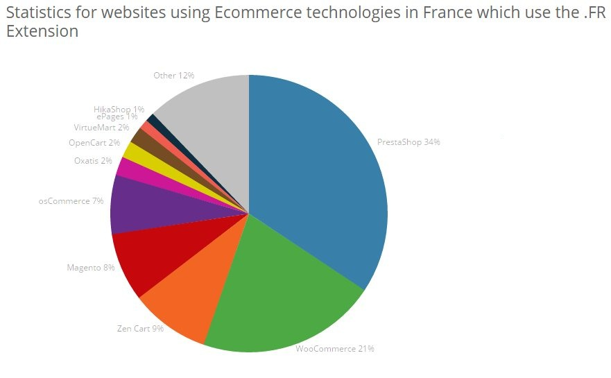 Ecommerce usage in France